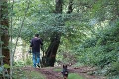 boswandeling op hun terrein
